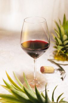 Free Wine Glass, Stemware, Drink, Tableware Royalty Free Stock Photography - 134701237