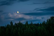 Free Moon Above Forest During Night Time Stock Photo - 134821810