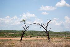 Free Ecosystem, Grassland, Savanna, Sky Royalty Free Stock Images - 134930319