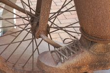 Free Shoe, Tree Royalty Free Stock Photos - 134930368