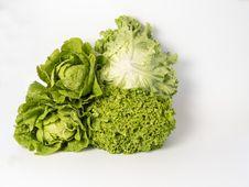 Free Vegetable, Leaf Vegetable, Produce, Lettuce Stock Images - 134930774