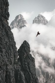 Free Bald Eagle On Flight Near Rock Formation Royalty Free Stock Photos - 134952878