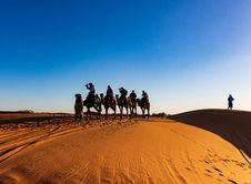 Free People Riding On Camels Royalty Free Stock Images - 134952969