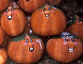 Free Happy Pumpkins Royalty Free Stock Image - 1352866