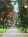 Free Park Alley Royalty Free Stock Images - 1354149