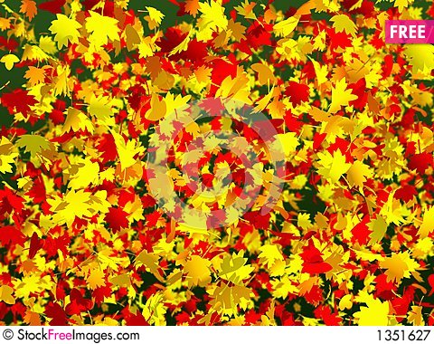 A lot of colorful autumn leaves Stock Photo