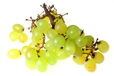 Free Grapes 5 Stock Image - 1350721