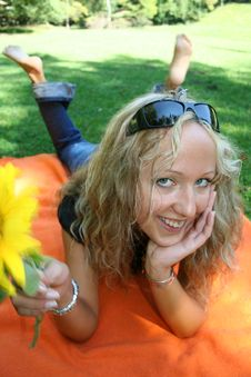 Free Close Sunflower Cut Stock Photo - 1351900