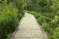 Free Wooden Path Stock Images - 1352984