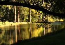 Free Tranquil Reflections Royalty Free Stock Photos - 1353098