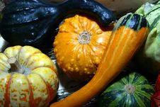 Free Pumpkin Arrangement Royalty Free Stock Images - 1353229