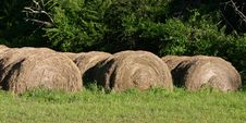 Free Haybales Royalty Free Stock Photography - 1354237