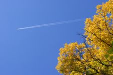 Plane In The Sky In The Autumn Stock Images