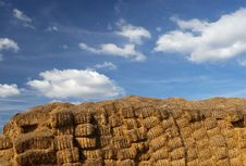 Free Hay Bales Stock Images - 1355354