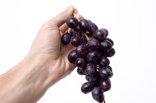 Free Black Grapes Royalty Free Stock Image - 1355876