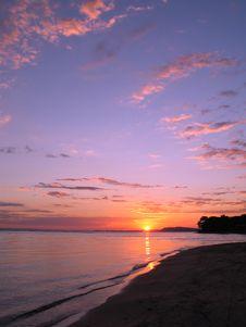 Free Beach In The Amazônia Royalty Free Stock Photos - 1356518