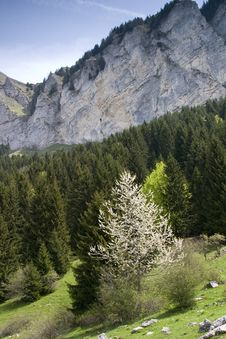 Free Pic De Memise, French Alps, May 2006 Royalty Free Stock Photo - 1356815