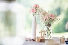 Free Selective Focus Photography Of Pink Carnation Flowers And Baby S Breath Flowers In Clear Glass Vase Royalty Free Stock Photo - 135201865