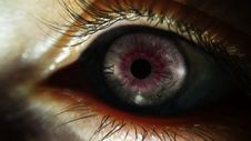 Free Eye, Eyelash, Iris, Close Up Stock Photos - 135310243