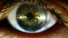Free Eye, Eyelash, Macro Photography, Close Up Stock Photo - 135310300