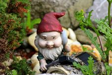 Free Garden Gnome, Lawn Ornament, Statue, Leaf Royalty Free Stock Photo - 135310515