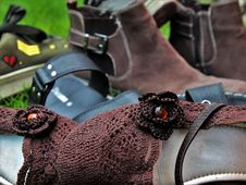 Free Product, Shoe, Horse Tack, Snout Royalty Free Stock Photos - 135310658