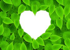 Love Green Royalty Free Stock Photo