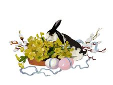 Free Easter Bunny Stock Image - 13548301