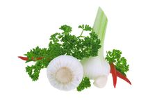 Free Fresh Garlic, Parsley And Chilli Peper Royalty Free Stock Images - 13549969