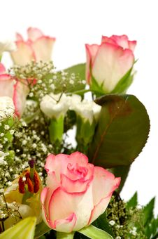 Free Bouquet Royalty Free Stock Image - 13550716