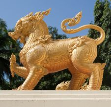 Free Golden Lion Royalty Free Stock Photo - 13551875
