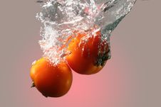 Free Red Tomatoes In Water Stock Images - 13552274