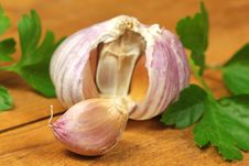 Free Fresh Garlic And Parsley Stock Images - 13552494