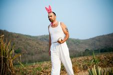 Funny Easter Rabbit Walking Across The Field Stock Image