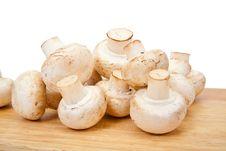 Free Champignon Mushroom Stock Photo - 13554850