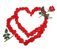 Free Hearts Stock Photography - 13554962