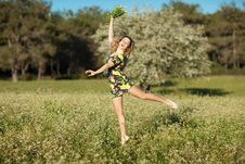 Beautiful Young Woman Jumping In Blooming Meadow Stock Images