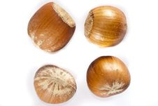 Free Closeup Of Hazel Nuts Royalty Free Stock Images - 13555509