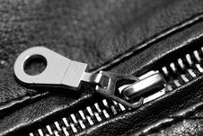 Free Zipper. Stock Images - 13555924