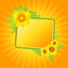 Free Banner With Sunflowers Royalty Free Stock Photos - 13556898