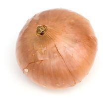 Onion Stock Photography