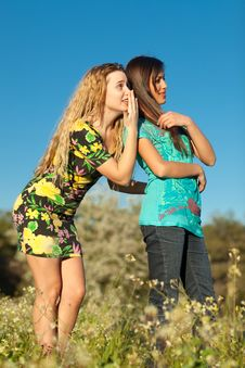 Free Two Beautiful Young Women Standing In Meadow Stock Image - 13559331