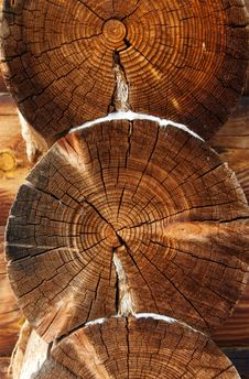 Free Beautiful Logs Stock Photo - 13559760