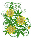 Free Yellow Flower And Green Leaves Royalty Free Stock Photography - 13561577