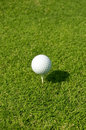 Free Golf Ball On White Tee Royalty Free Stock Photography - 13565577