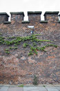 Free Ivy And Camera On Red Bricked Wall. Royalty Free Stock Photo - 13568665