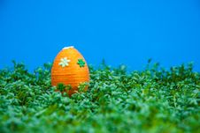 Free Easter Egg On Cress Royalty Free Stock Photography - 13560557