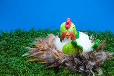 Big Hen On Cress Royalty Free Stock Photos