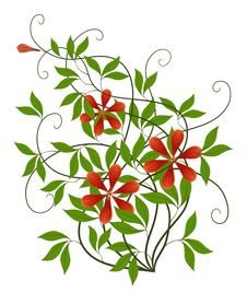 Free Red Flower And Green Leaves Royalty Free Stock Image - 13561556