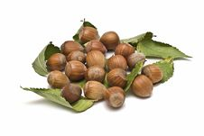 Free Some Hazelnuts With Leaves. Stock Images - 13561574